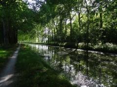 Entre Montargis et Châilly-en-Gatinais