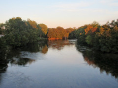 Le Loiret à Saint-Hilaire