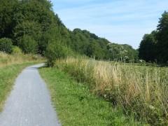 Axe vert de l'Avesnois Scandibérique