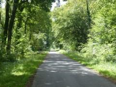 Route vers Compiègne