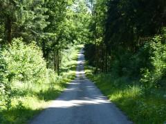 Forêt d'Hirson - Etape Maubeuge-Hirson