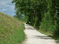 Entre Montlouis et Tours