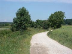 2c chemin rural entre Moussy-le-Neuf et Moussy-le-Vieux