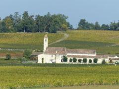 Vignobles aux alentours de Saint-Emilion