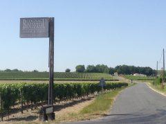Vignobles du Cognac